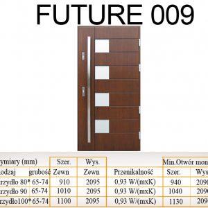 Future 009